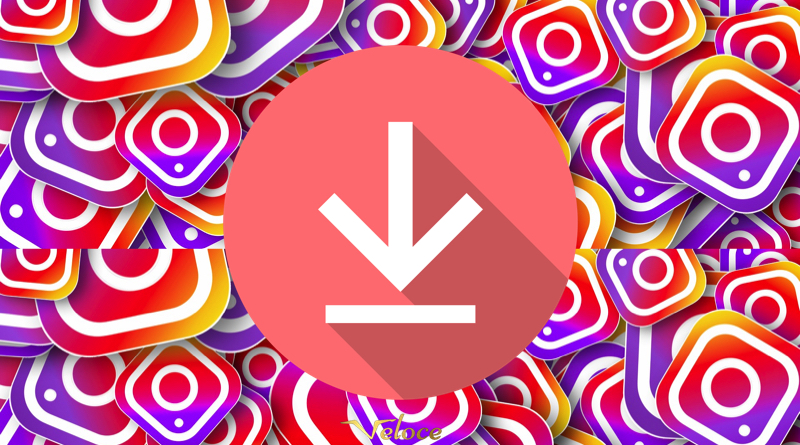 The Complete Guide on How to Download Instagram Videos