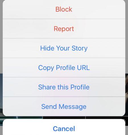 Instagram profile URL