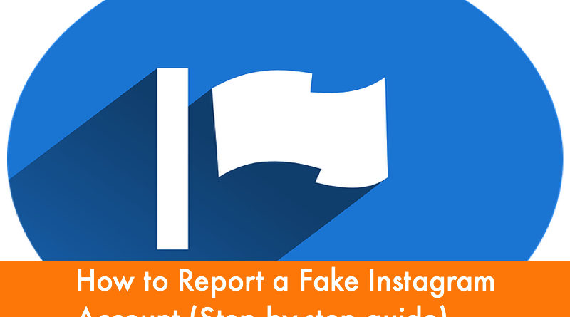 How to Report a Fake Instagram Account (Step by-step guide)