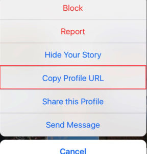 Instagram Copy Profile URL