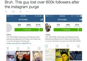 Instagram purge fake followers