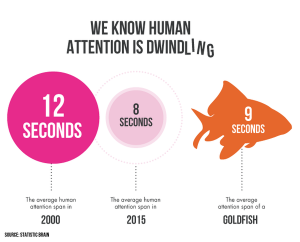 Human attention span