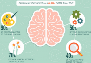 Human brain process visual content