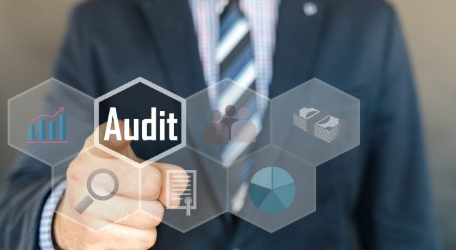 How to Make a Comprehensive Backlink Profile Audit