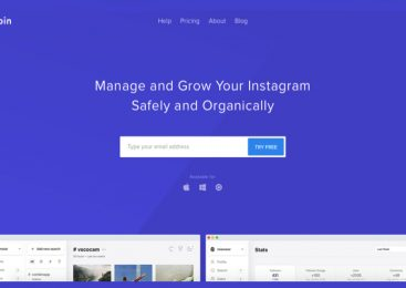 How to Organically Grow Your Instagram to Boost Exposure