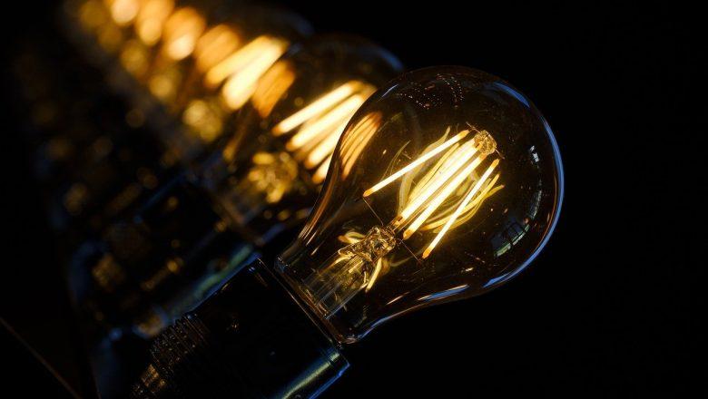 Best Type of Grow Light for Indoor Grows